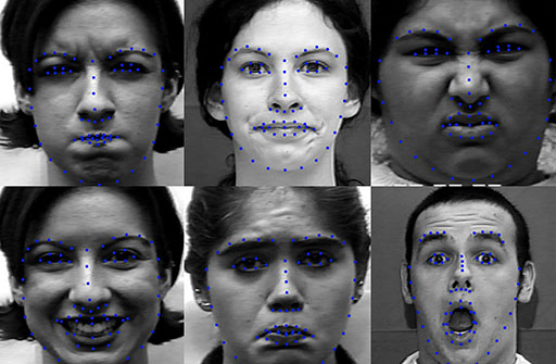 Facial Expression Recognition by Combining Texture and Geometrical Features Teaser Image.